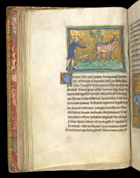 A Man Ploughing With Oxen, In A Bestiary
